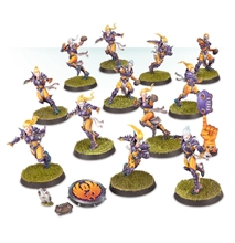 Warhammer Blood Bowl - Elfen Team